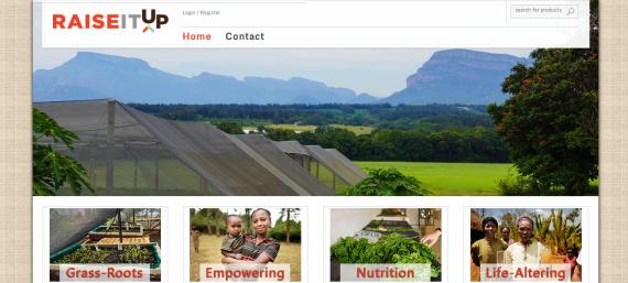 screen shot of website