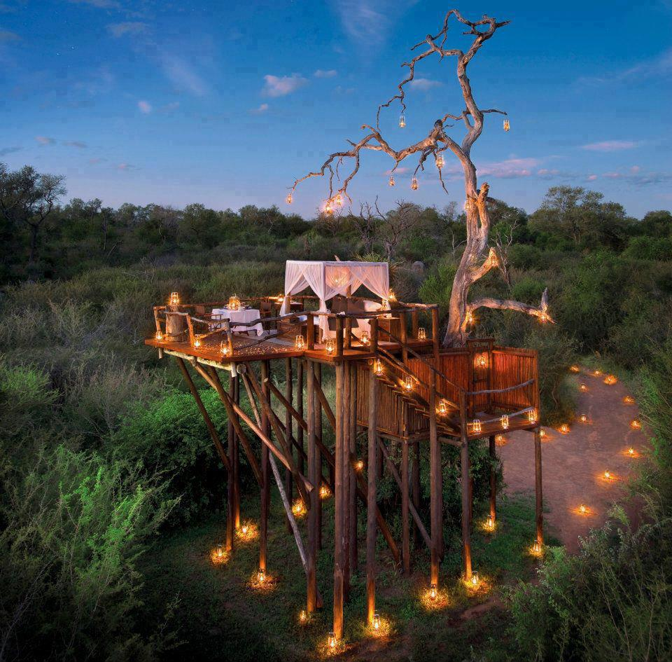 chalkley treehouse amazing outdoor hotel in lion sands amazing outdoor lighting