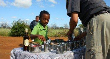 Safari Activities for Kids